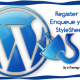 How to add your own stylesheet to your WordPress plugin settings page or All Admin page