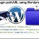 Determine Plugin Directory and URL in WordPress using WP API