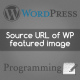 How to get the souce URL of the featured image in WordPress