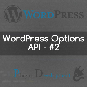 WordPress Options API