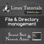 Directory and File Management in Linux